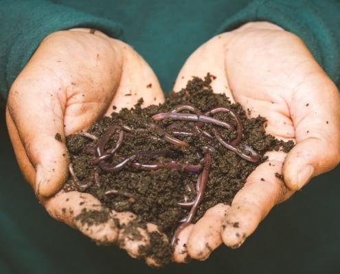 Comment fabriquer le compost parfait ?